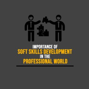 soft skills development